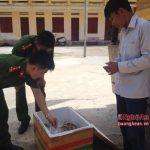 5 tạ nội tạng động vật bốc mùi từ Ninh Thuận về Nghệ An