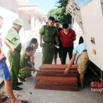 Xe khách chở gỗ hương xuyên biên giới