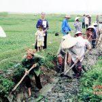 Phụ nữ Đô Lương: Nhiều hình thức giúp hội viên thoát nghèo