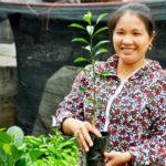 Cơ sở sản xuất cây giống Hạnh Quý – Đô Lương