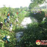 Gần 1.000 phụ nữ xã Thuận Sơn làm giao thông thủy lợi