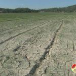 Hàng chục hộ dân của xã Đà Sơn có nguy cơ mất mùa do không có nước