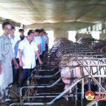 Đồng chí Lại Xuân Môn – Chủ tịch Hội Nông dân Việt Nam về thăm trang trại ông Đặng Ngọc Tuấn ở xã Xuân Sơn