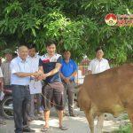 Đô Lương tổ chức trao tặng trâu bò cho người khuyết tật và trẻ mồ côi nghèo