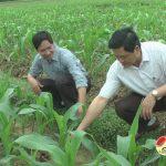 Đồng chí Nguyễn Công Châu kiểm tra công tác ra quân làm giao thông thủy lợi và sản xuất vụ đông ở xã Mỹ Sơn.