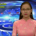 Chương trình thời sự truyền hình Đô Lương ngày 12 tháng 10 năm 2016