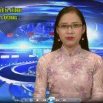 Chương trình thời sự truyền hình Đô Lương ngày 23 tháng 11 năm 2016.