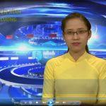 Chương trình thời sự Truyền hình Đô Lương ngày 11 tháng 11 năm 2016.