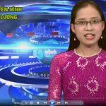 Chương trình thời sự truyền hình Đô Lương ngày 28 tháng 11 năm 2016.