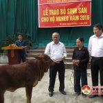 Đồng chí Trương Hồng Phúc – Tỉnh ủy viên – Bí thư huyện ủy trao tặng bò tại xã Nhân Sơn