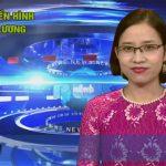 Chương trình thời sự Truyền hình Đô Lương ngày 28 tháng 12 năm 2016