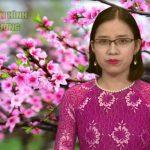 Chương trình thời sự Truyền hình Đô Lương ngày 25 tháng 1 năm 2017
