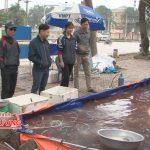 Thị trường cá chép cúng Ông Táo ở Đô Lương ổn định