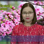 Chương trình thời sự Truyền hình Đô Lương ngày 31 tháng 1 năm 2017(tức ngày 4 tết)