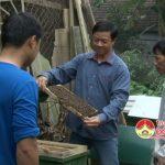 Ông Trần Văn Dung làm giàu từ nghề nuôi ong