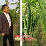 Đồng chí Ngọc Kim Nam – Chủ tịch UBND huyện thăm mô hình trồng bí của anh Nguyễn Phùng Khởi
