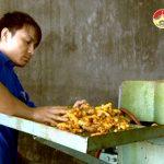 Anh Nguyễn Đình Tuấn thu nhập 500 triệu đồng/năm từ tinh bột nghệ