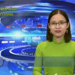 Chương trình thời sự Truyền hình Đô Lương ngày 17 tháng 3 năm 2017