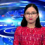 Chương trình thời sự Truyền hình Đô Lương ngày 19 tháng 4 năm 2017