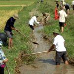 Hội CCB xã Đông Sơn tổ chức nạo vét kênh mương thủy lợi nội đồng