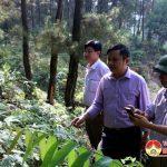 Đồng chí Nguyễn Trung Thành – Phó chủ tịch UBND huyện kiểm tra công tác PCCCR