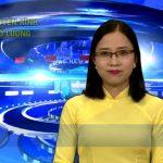 Chương trình thời sự Truyền hình Đô Lương ngày 8 tháng 5 năm 2017