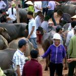 Độc đáo chợ Ú Đại Sơn huyện Đô Lương