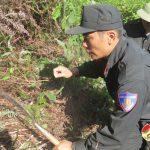 650 học viên trường Trung cấp Cảnh sát Vũ trang phát đường băng cản lửa.