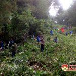 Huyện Đoàn Đô lương ra quân thu dọn thực bì phòng chống cháy rừng năm 2017