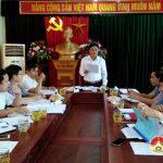 Thường trực huyện ủy duyệt chương trình đại hội huyện Đoàn nhiệm kỳ 2017-2022