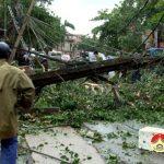 Các đồng chí Lãnh đạo huyện kiểm tra khắc phục  hậu quả cơn bão số 2.