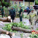 Đồng chí Ngọc Kim Nam – Chủ tịch UBND huyện chỉ đạo khắc phục cơn bão số 2