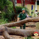 Đồng chí Trương Hồng Phúc – Tỉnh uỷ viên – Bí thư huyện uỷ kiểm tra chỉ đạo công tác khắc phục cơn bão số 2