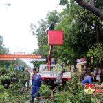 Đô Lương chặt tỉa cây xanh đối phó với bão số 4