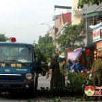 Đô Lương triển khai chặt tỉa cây phòng chống bão số 4.
