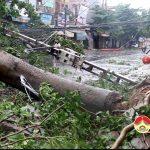 Đô Lương bão số 2 gây thiệt hại lớn