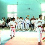 Đô Lương khai mạc giải Karatedo năm 2017