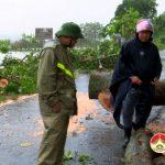 Đồng chí Ngọc Kim Nam – Chủ tịch UBND huyện kiểm tra  khắc phục ảnh hưởng bão số 10