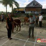 MTTQ xã Đặng Sơn trao tiền hỗ trợ tu sửa nhà ở và trao bò giống sinh sản cho hộ nghèo.