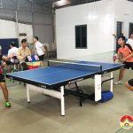 Khai trương Câu lạc bộ Bóng bàn Bình Minh