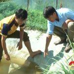 Đào Văn Thắng – Làm giàu từ nuôi cá Chạch quế