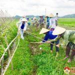 Xã Lưu Sơn ra quân làm giao thông thuỷ lợi