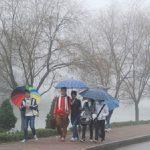 Thời tiết 21/11: Bắc và Trung Trung bộ có mưa vừa đến mưa to, biển động
