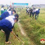 600 đoàn viên thanh niên Đô Lương ra quân hành động Chào mừng Đại hội đoàn Toàn Quốc