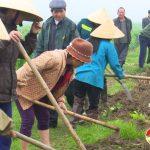 Nông dân Thuận Sơn nạo vét 2km kênh mương đất bãi Sông Lam