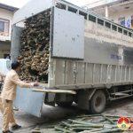 Công an Đô Lương bắt giữ 1 xe ô tô chở gỗ trái phép