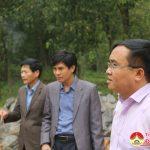 Đồng chí Ngọc Kim Nam – Chủ tịch UBND huyện kiểm tra công trình tôn tạo, xây dựng phần mộ Uy Minh Vương Lý Nhật Quang