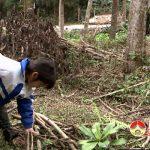 Cảm thương em Đặng Minh Hoài, nguy cơ phải bỏ học giữa lớp 2  vì nhà qúa nghèo.