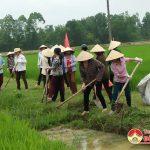 Hội LHPN huyện Đô Lương phát động hưởng ứng tháng hành động vì ATTP và tuần lễ quốc gia nước sạch, vệ sinh môi trường