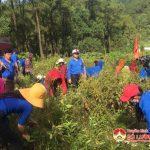 Huyện đoàn Đô Lương: Tổ chức lễ ra quân chiến dịch thanh niên tình nguyện hè 2018.
